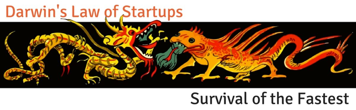 Darwin's Law of Startups - Survival of the Fastest